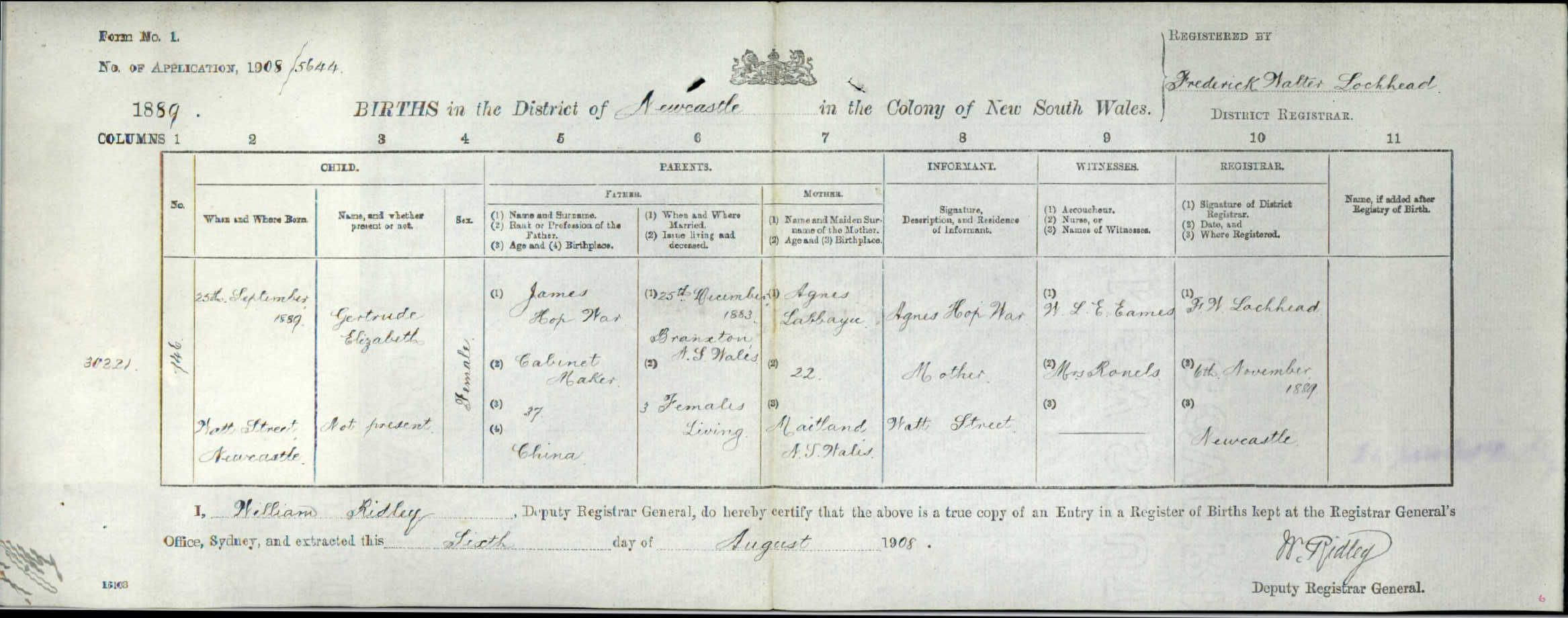 Naturalisation the tigers mouth birth certificate of gertrude hop war newcastle 1889 naa sp421 c19092915 xflitez Choice Image